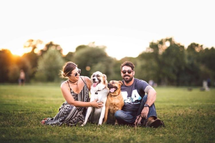 san Diego Pet friendly Rehabs