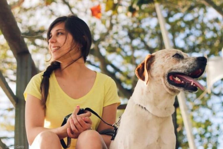 Anaheim ca dog friendly rehab